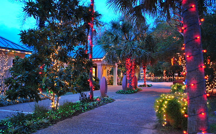 holiday light safari december 7 8 14 23 2018 530 830 pm last admission 730 pm - Christmas Lights At The Zoo