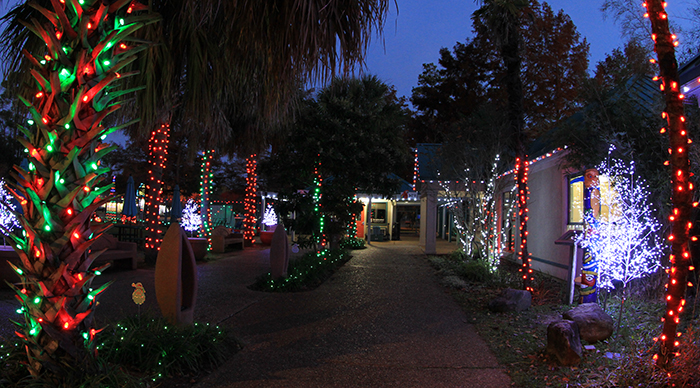 Holiday Light Safari December 5-7, 12-14, 19-21 & 26-28, 2019 (Thursdays, Fridays, Saturdays)